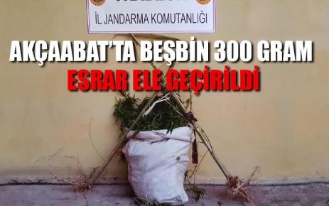 Akçaabat'ta beş bin 300 gram esrar ele geçirildi.