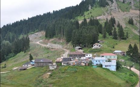 Büyükşehir'den Yeşilyol Projesi'ne 8 Milyonluk Yatırım.