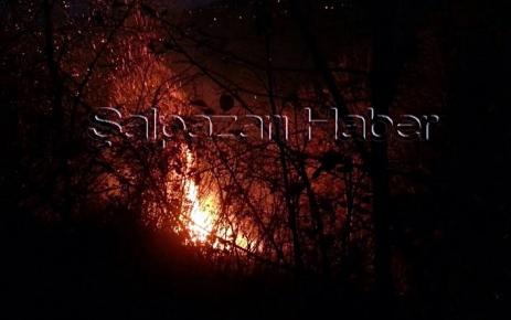 Dereköy Mahallesinde Orman Yangını.