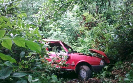 Gökçe Köy'de kaza.