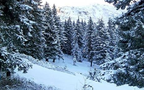 Kar Yağışı İlçemiz'de Etkili Oldu.