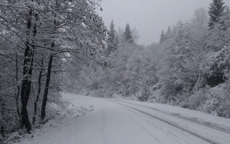 Memlekete yılın ilk karı yağdı