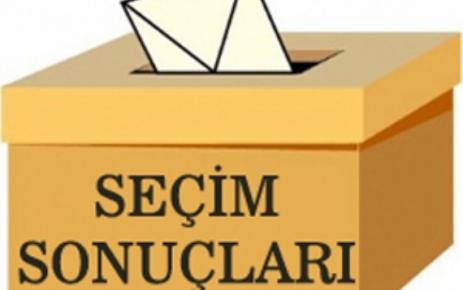 Mahalle Mahalle Şalpazarı seçim sonuçları